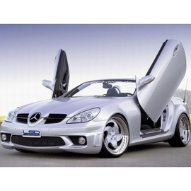 LSD Lambo Style Doors Mercedes SLK 04-