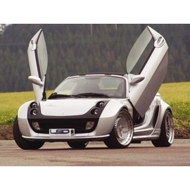 LSD Lambo Style Doors Smart Fortwo Roadster / Coupe